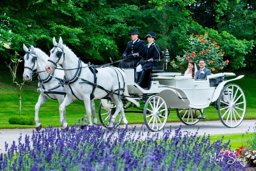 Bride and groom in carriage with white horses and lavender foreground - Wedding at Clearwell Castle - Mark Sisley Photography