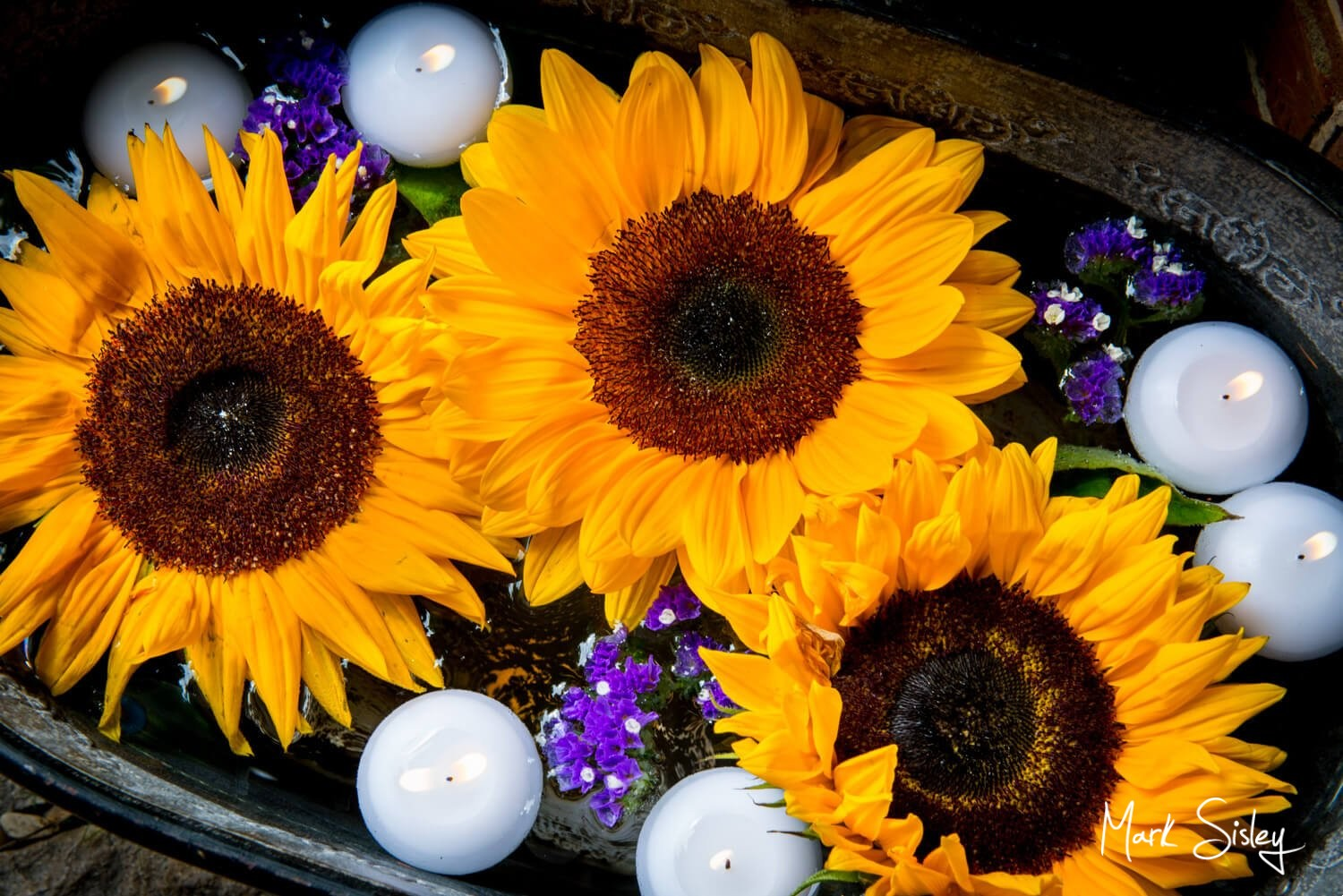 Dairy Waddesdon wedding photos of sunflower display