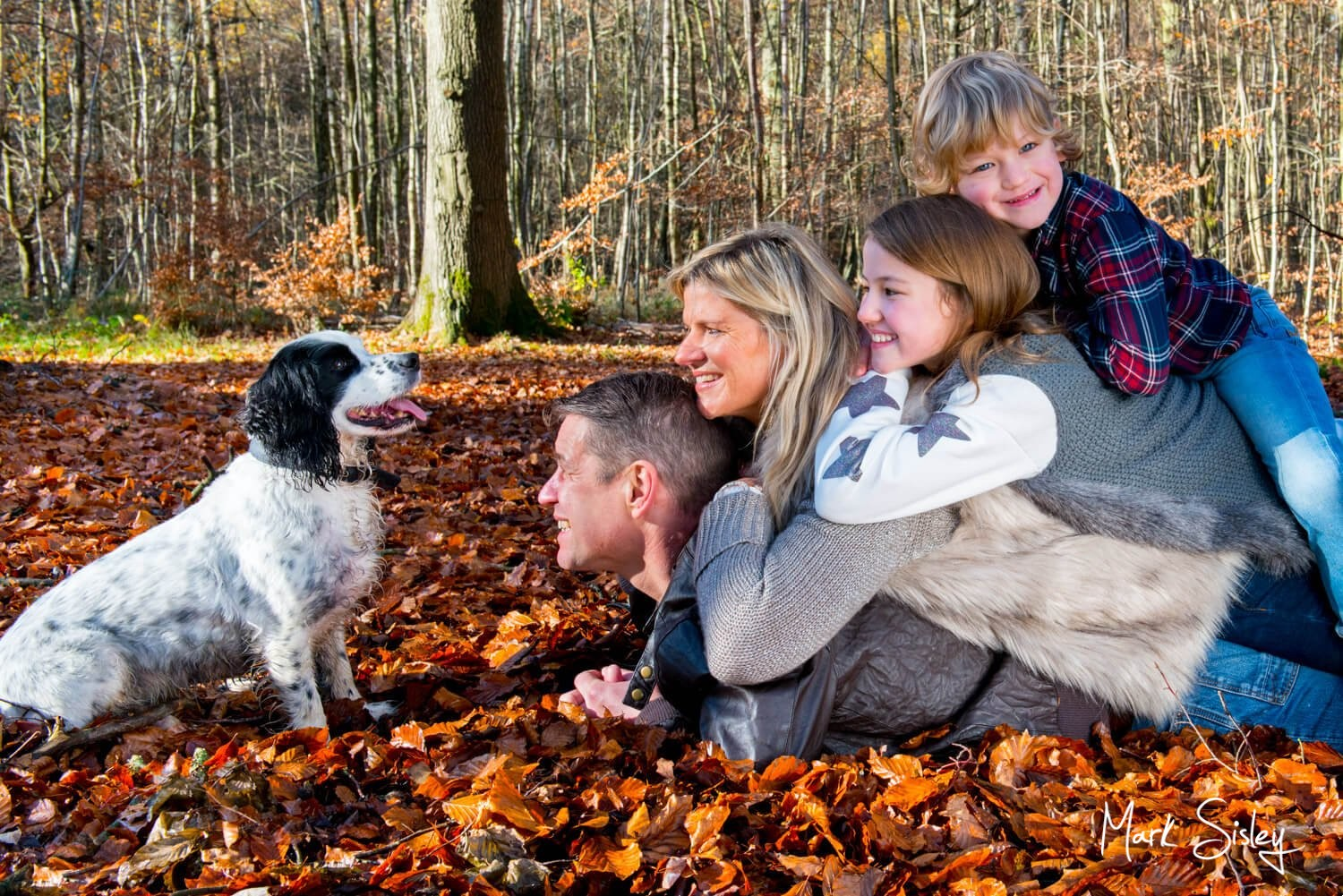 Amersham and Beaconsfield Autumn Family Portraits in nearby woodlands